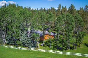 Folk Tree Farm MLS-30